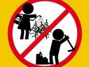 световен ден срещу детския труд
