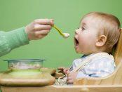 подправки бебешка храна бебе хранене