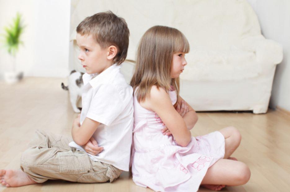 konflikt mezhdu brat i sestra detsa