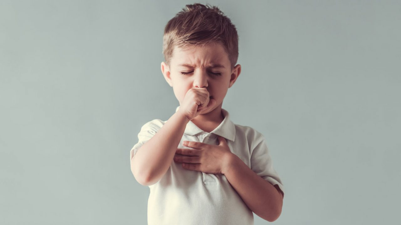 коклюш симптоми лечение деца